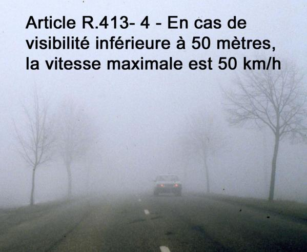 Brouillard arbres 1 cadre haut texte 2